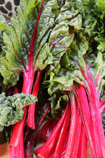 Swiss Chard is used in many Cajun recipes.