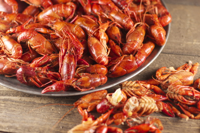 How To Eat Boiled Crawfish Is A Tutorial On The Cajun Watermelon Wallpaper Rainbow Find Free HD for Desktop [freshlhys.tk]
