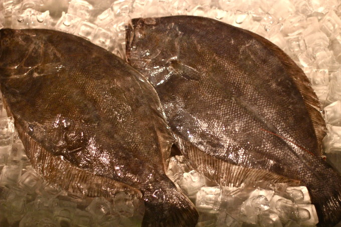 Fresh Flounder is used in many Stuffed Whole Flounder recipe.