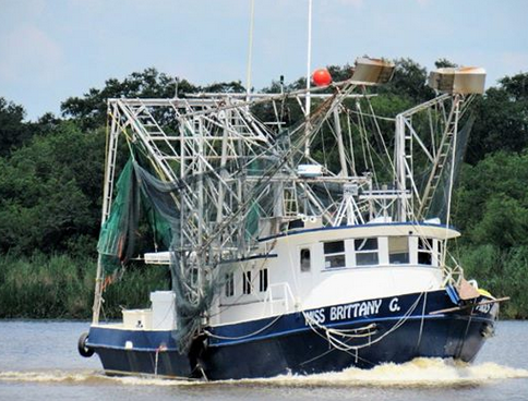 Bringing in the fresh catch, the Granger family is a proud Louisiana fishing family.