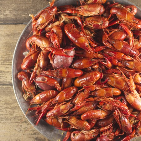 Crawfish Rules
