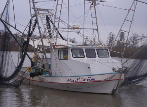 Acy's shrimp boat brings fresh Gulf shrimp to the docks in Venice. (Photo credit: Internet archive)